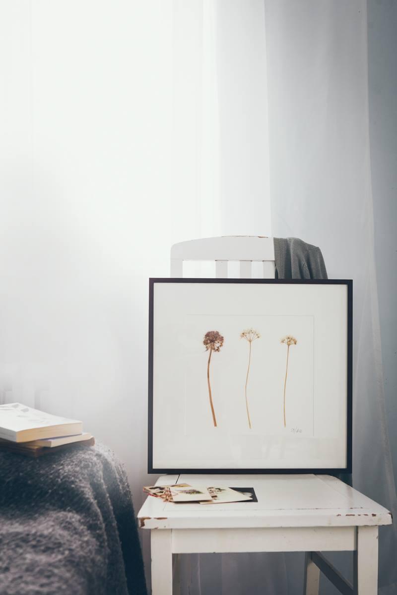 Nordic_Herbarium_Oot-Oot_Blogi_1 raam
