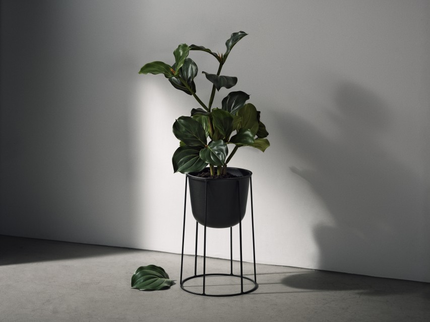 Menu-Wire-Plant-Pot-Oot-Oot-Blog_2 floora